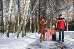 Famiglia di inverno Immagine Stock
