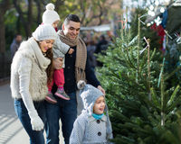 Famiglia di quattro che sceglie X-albero al mercato Fotografie Stock Libere da Diritti