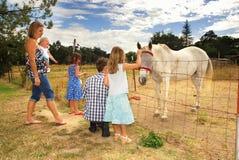 Famiglia e cavallo fotografie stock