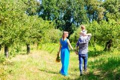 Famiglia felice che cammina insieme immagini stock