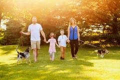 Famiglia felice che cammina insieme con i cani di estate Fotografia Stock