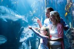 Famiglia felice che indica un pesce nel carro armato Fotografia Stock Libera da Diritti