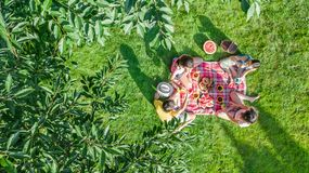 Famiglia felice con i bambini che hanno picnic in parco, genitori con i bambini che si siedono sull'erba del giardino e che mangi immagini stock libere da diritti