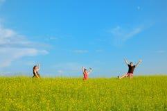 Famiglia felice con le nubi e l'erba Immagine Stock