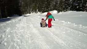 Famiglia felice divertendosi gioco in una foresta nevosa nelle montagne nell'inverno La mamma ed i suoi due bambini sledding video d archivio