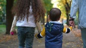 Famiglia felice, mamma che cammina con tenersi per mano dei bambini Il concetto della famiglia, madre che cammina nel parco con g archivi video