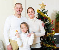 Famiglia felice a natale Immagini Stock Libere da Diritti