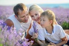 Famiglia felice in un campo di lavanda sul tramonto Fotografia Stock Libera da Diritti