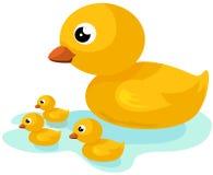 Famiglia gialla dell'anatra Immagini Stock