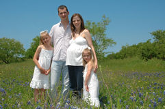 Famiglia incinta Fotografia Stock