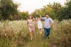 Famiglia incinta felice un giorno di estate sulla natura, sorridendo, famiglia felice Fotografia Stock Libera da Diritti