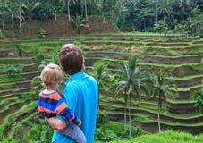 Famiglia nei giacimenti del riso di Bali Immagine Stock Libera da Diritti