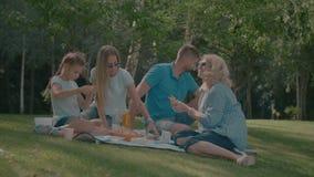 Famiglia rilassata che ha picnic nel parco di estate archivi video