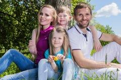 Famiglia su erba nel parco di estate immagini stock