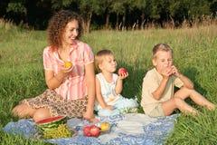 Famiglia sul picnic Fotografie Stock