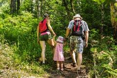 Famiglia sulla passeggiata in montagne nel giorno di estate Fotografia Stock Libera da Diritti