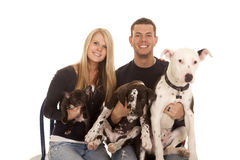 Familhy dogs sit close smile Royalty Free Stock Image