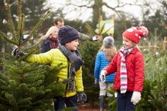 Familia al aire libre que elige el árbol de navidad junto Imagen de archivo libre de regalías