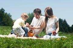 Familia alegre que merienda en el campo Foto de archivo libre de regalías