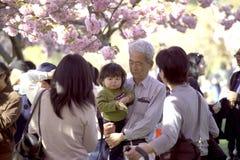 Familia asiática en el festival del flor de cereza Foto de archivo libre de regalías