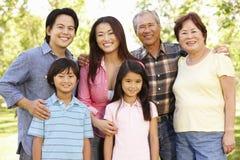 Familia asiática multigeneración del retrato en parque Foto de archivo libre de regalías
