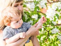 Familia cariñosa feliz con el hijo del bebé en jardín floreciente de la primavera Sirva de madre al bebé de la explotación agríco fotografía de archivo libre de regalías