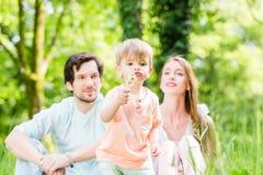 Familia con el hijo en la semilla del diente de león del prado que sopla Imágenes de archivo libres de regalías