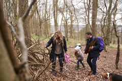 Familia con el perro casero que recoge la madera caida en una madera Imagen de archivo
