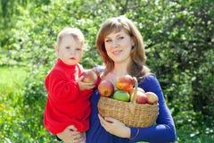 Familia con las manzanas en huerta Imágenes de archivo libres de regalías