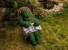 Familia de arbustos vivos Foto al aire libre del estilo del cuento de hadas Foto de archivo libre de regalías