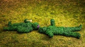 Familia de arbustos vivos Foto al aire libre del estilo del cuento de hadas Imagenes de archivo