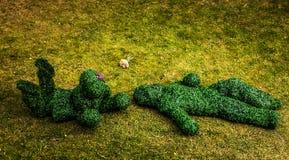 Familia de arbustos vivos Foto al aire libre del estilo del cuento de hadas Fotos de archivo libres de regalías