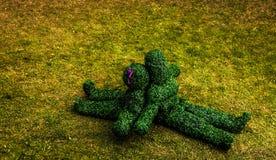 Familia de arbustos vivos Foto al aire libre del estilo del cuento de hadas Imágenes de archivo libres de regalías