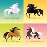 Familia de caballos. Fotografía de archivo