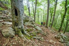 Familia de caminantes en rastro de montaña Imágenes de archivo libres de regalías