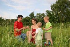 Familia de cuatro miembros en prado Imágenes de archivo libres de regalías