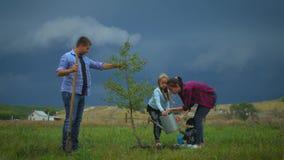 Familia de cuatro miembros que planta un nuevo árbol en su jardín El concepto es plantar los árboles, familia amistosa metrajes