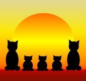 Familia de gato Imagen de archivo libre de regalías
