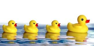 Familia de goma del pato Imagenes de archivo