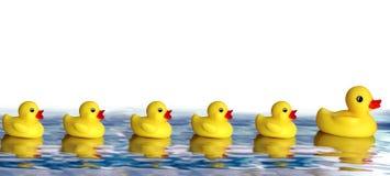 Familia de goma del pato Fotografía de archivo