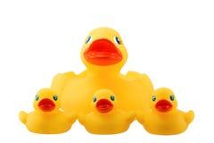 Familia de goma del pato con tres pequeños ducky aislada en blanco Imagen de archivo libre de regalías