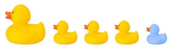 Familia de goma del pato del juguete Foto de archivo libre de regalías