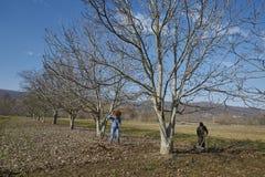 Familia de granjeros que hacen el trabajo de la primavera imagenes de archivo