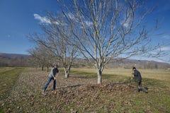 Familia de granjeros spring cleaning Imagen de archivo