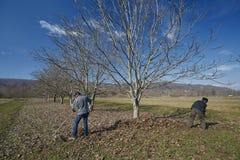 Familia de granjeros spring cleaning fotos de archivo libres de regalías