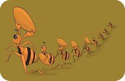 Familia de la hormiga libre illustration