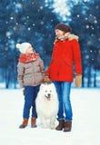 Familia de la Navidad, madre feliz y niño del hijo que camina con el perro blanco del samoyedo en nieve en día de invierno Fotos de archivo