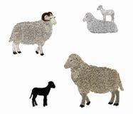 Familia de las ovejas Fotos de archivo