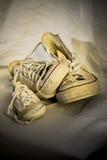 Familia de las zapatillas de deporte Foto de archivo libre de regalías