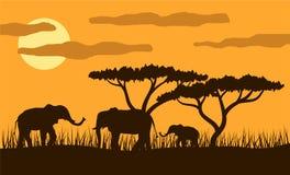 Familia de los elefantes en Savannah Sunset Flat Style Imagen de archivo libre de regalías